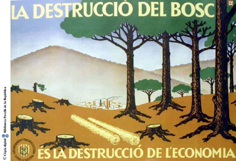La_Destrucci_del_bosc_s_la_destrucci_de_leconomia