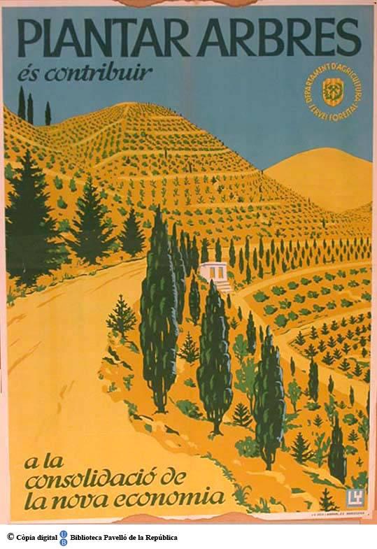 Plantar_arbres_s_contribuir_a_la_consolidaci_de_la_nova_economia